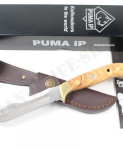 PUMA IP Pal 240 Olive