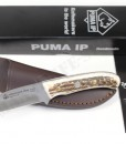 PUMA IP catamount stag