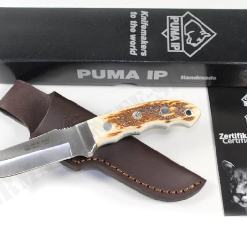 PUMA IP ebro, stag 810084 002