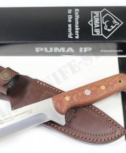 PUMA IP outdoor palmwood