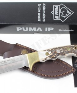 PUMA IP outdoor stag