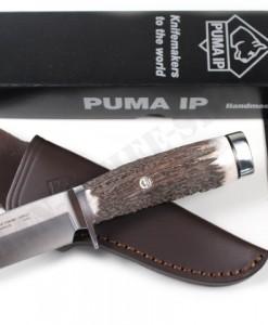 PUMA IP scout master