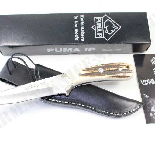 Puma IP Elch Elk Stag # 811178 001